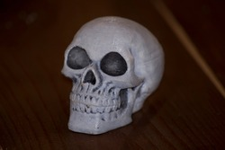 Skull closeup made of plastic