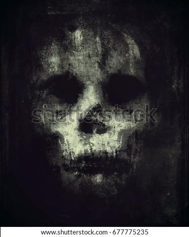 skull isolated on black...