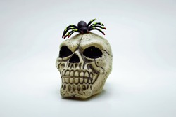 Skull on a white background and on it sits a spider. Halloween. Decorations and accessories.