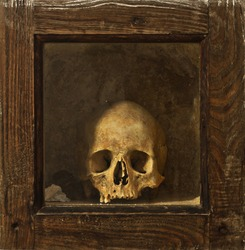 Skull on wooden reliquary