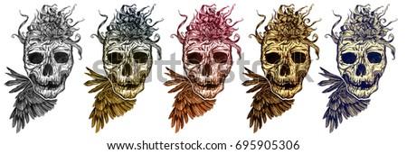 Stock Photo skull variations