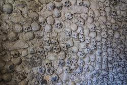 skull wall crypt