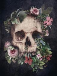 Skull with plants on black background on vintage style. Photomanipulation