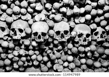 Skulls and bones. Black and white image.