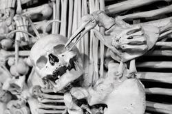 Skulls and bones - in a tomb