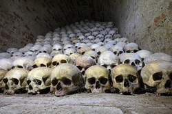 skulls human catacombs religious theme