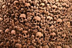 skulls human wall catacombs religious theme