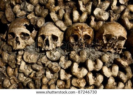 Skulls in the Catacombs in Paris