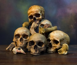 Skulls with bone on old wooden plate, Still Life Image