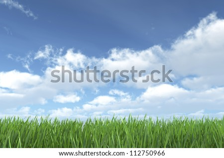 Sky and Grass - Nature Background - Sky and Grass - High quality render