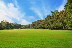 Sky and green grass field in city park