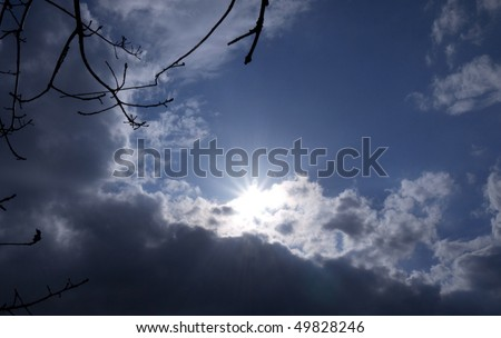 Sky with sun and branches