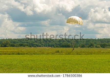Skydiver paratrooper in parachute dome before touchdown in the set area to land situated in the field among the grass, which softens the landing. Landing, parachutist, airborne, paratrooper. Touchdown
