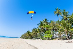 Skydiving skydiver and passenger tandem parachute landing approach on tropical palm trees beach ocean coastline  in clear blue sky.