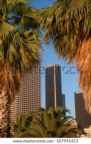 Skyline of Los Angeles, California through palm trees