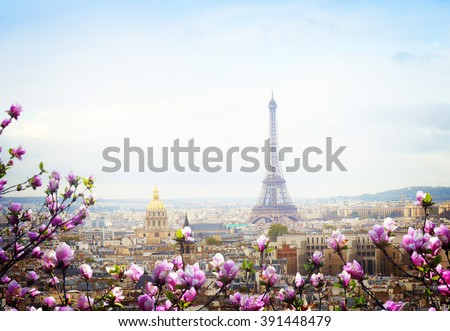 skyline of Paris city roofs with Eiffel Tower at spring day with tree bloom, France, retro toned