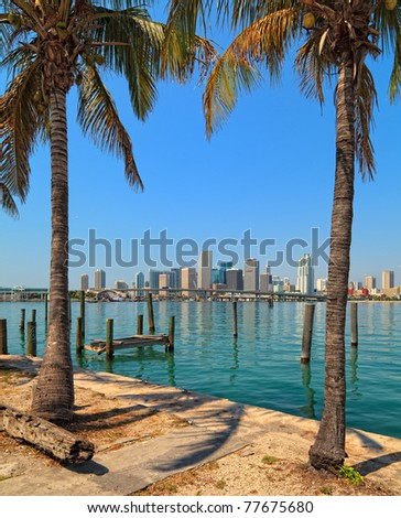 Skyline view of downtown Miami and Biscayne Bay between two coconut trees.