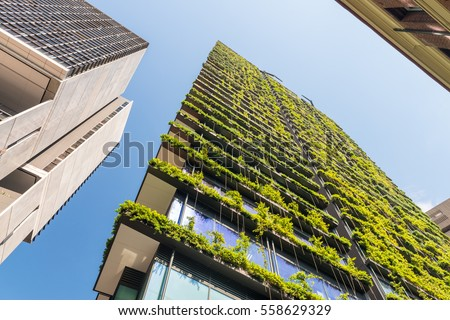 Skyscrapers with flowers and vegetation along balconies. #558629329
