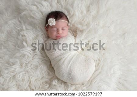 Free Photos Newborn Baby One Day Old Avopix Com