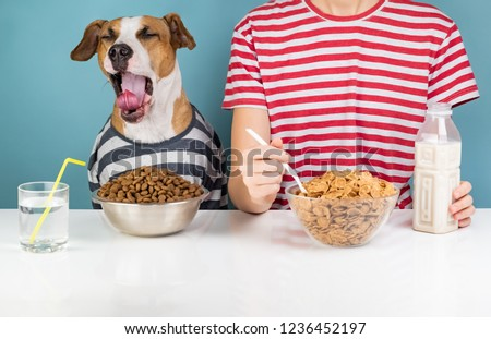 Sleepy dog and human having breakfast together. Minimalistic illustrative concept of yawning dog with a person in front of pet food and cereals bowls #1236452197