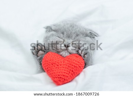 Sleepy kitten lies with red heart on a bed under blanket. Valentines day concept. Top down view Stock fotó ©