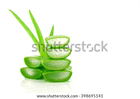 Slice Aloe Vera (Aloe barbadensis Mill.,Star cactus, Aloe, Aloin, Jafferabad or Barbados) a very useful herbal medicine for skin care and hair care. #398695141