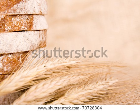 slice of bread with wheat