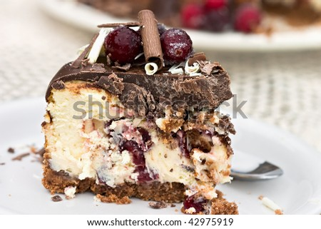 Slice of cheesecake baked with dried sweetened cranberries and covered in melted chocolate. Garnished with chocolate shavings and sugar coated cranberries. Shallow DOF.