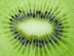 Slice of fresh juicy delicious and healthy kiwi fruit, close up