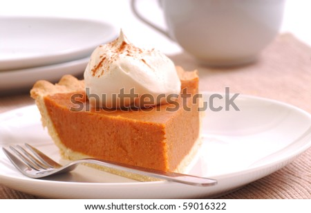 Slice of freshly made pumpkin pie with whipped cream and cinnamon