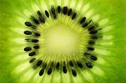 slice of kiwi fruit on a full frame. horizontal format