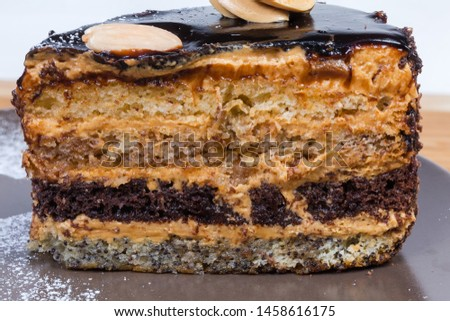Slice of the layered sponge cake with chocolate coating. Cross section, texture layers close-up