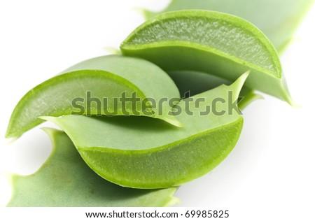 Sliced Aloe Vera leaf
