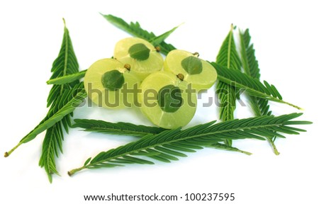 Sliced amla with green leaves