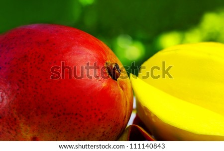 Sliced mango on green background