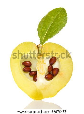sliced small quince with green leaf and seeds isolated on white