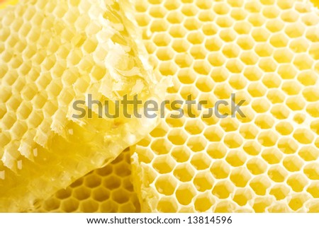 slices of  honeycombs