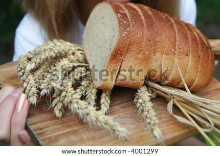 Slices of multi grain bread with corn - wheat