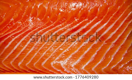 slide raw salmon fish texture for food background