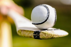 Sloitar (ball) on a hurl, used in the Irish game of Hurling, the fastest ball game in the world.