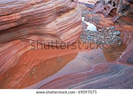 Slot canyon with pools of standing water and reflections, Valley of Fire State Park, Nevada, USA