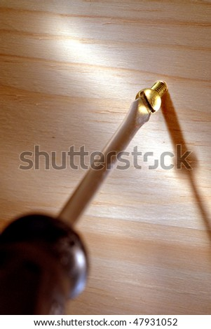Slotted screwdriver driving a brass screw into a wood board
