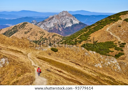 Slovak mountains trekking path and person in Mala Fatra
