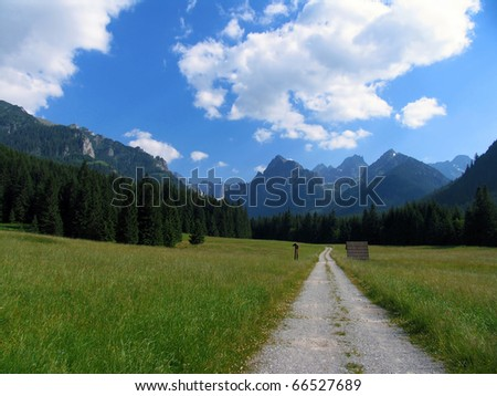 Slovakia beauty, White water valley  in High Tatras