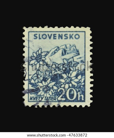 SLOVAKIA - CIRCA 1943: A stamp printed in Slovakia showing flowers circa 1943 - stock photo