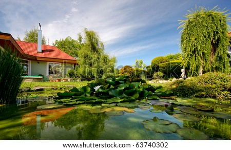 Slovakia house and garden lake with water lily - Slovakia, Europe