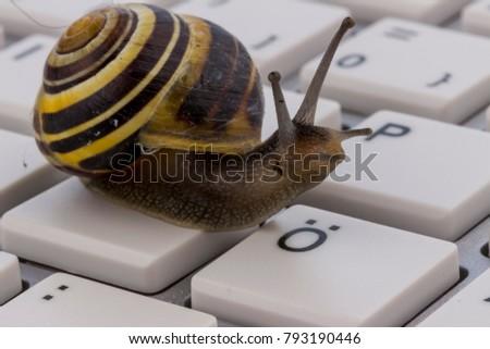 slow internet access #793190446