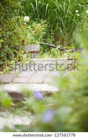 Slow Life - stock photo