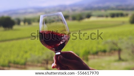Slow motion of middle aged sommelier mix and controls the color of red wine poured in transparent glass on a scenic vineyard panoramic background (close up) #556617970