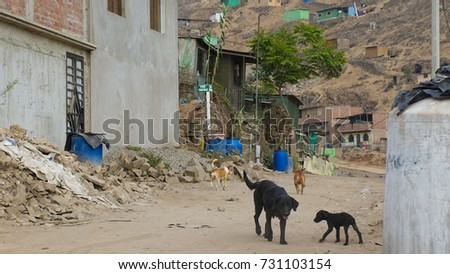 Slums surrounding Lima, Peru: December 2016. Shanty Towns in The Surroundings of Lima City Proper Where New migrants settle in shacks after migrating from rural Peru